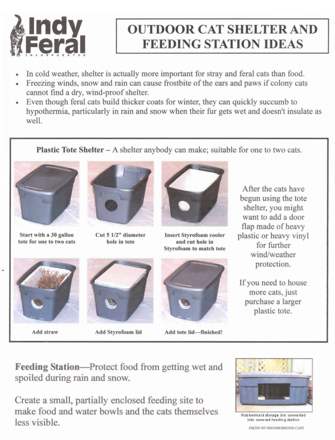 Indy Feral Outdoor Feral Cat Shelter Feeding Stations Ideas Diy Tips Feral Cat Shelter Feral Cats Outdoor Cat Shelter
