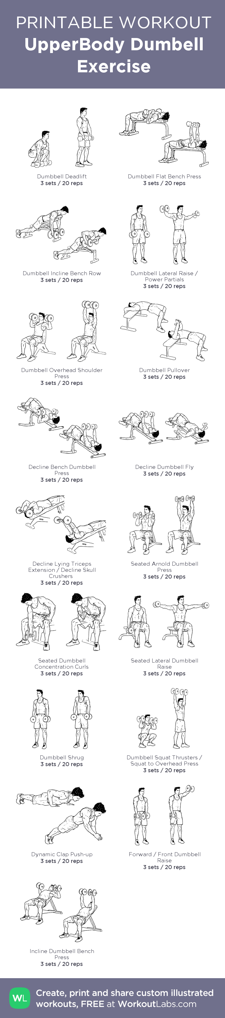UpperBody Dumbell Exercise WorkoutLabs Fit