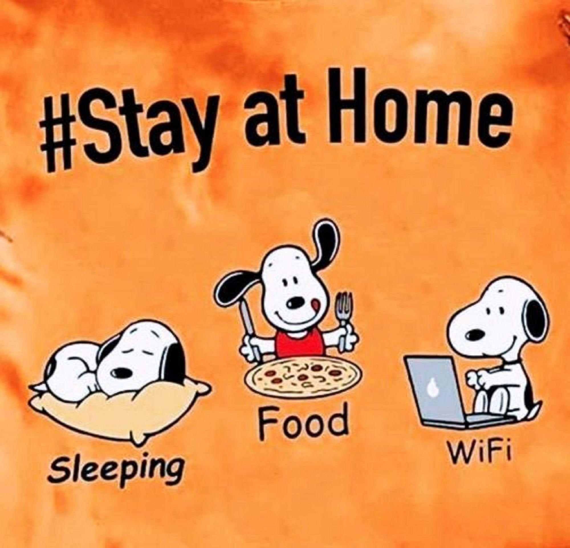 Snoopy Stay at Home Corona-virus Reproduction,Grea