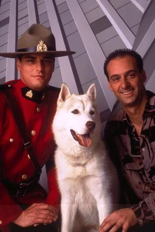 "I am in love with this dog! Lincoln - one of the many dogs that played Diefenbaker the supposed half wolf half dog that was ""deaf"" and read lips (LOL) on the show Due South - flashback from the mid 90s. Good clean TV like this rarely exists anymore."