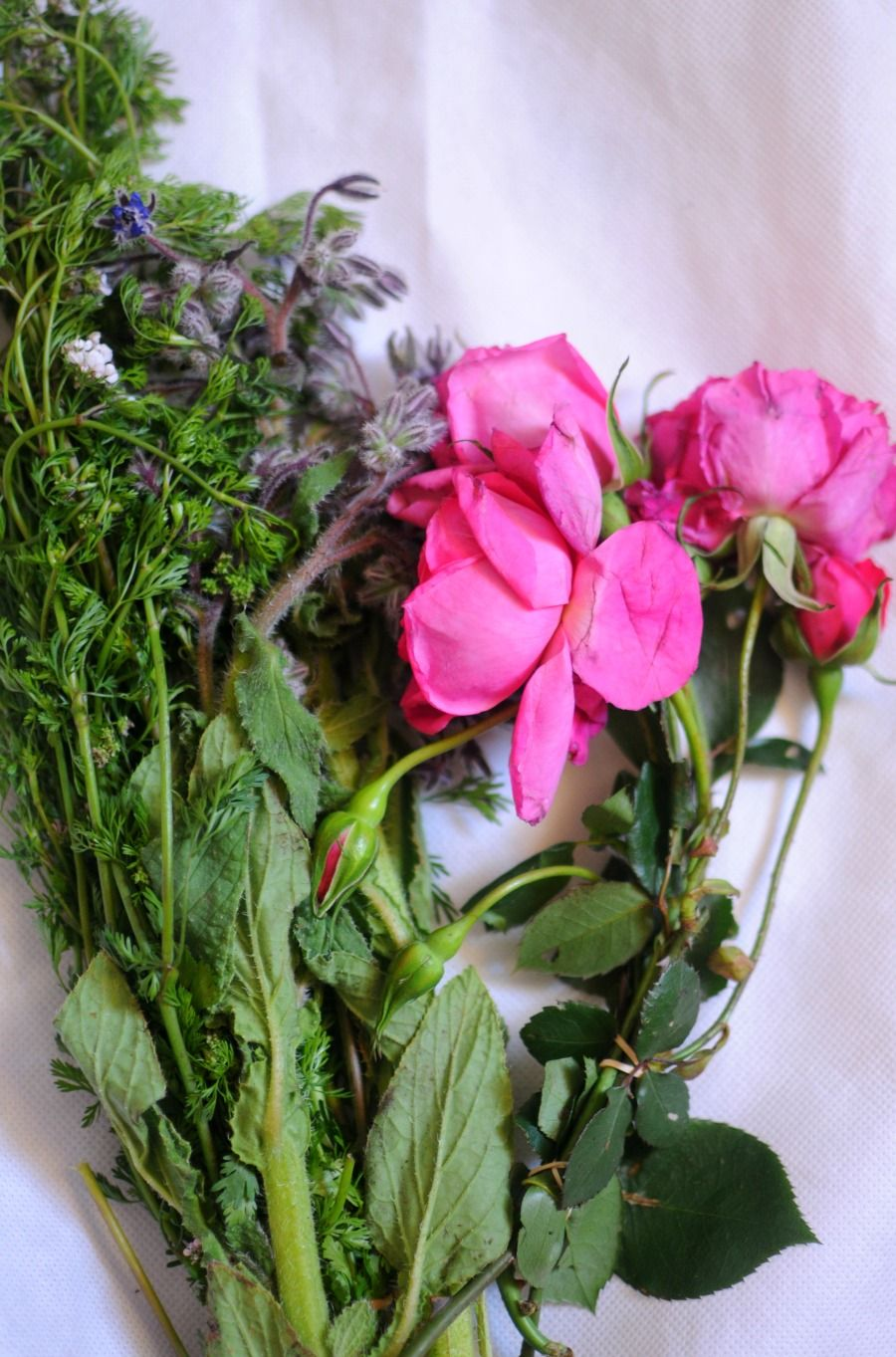 How to bring wilted flowers back to life wilted flowers