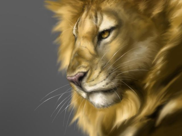 leo the lion - Google Search