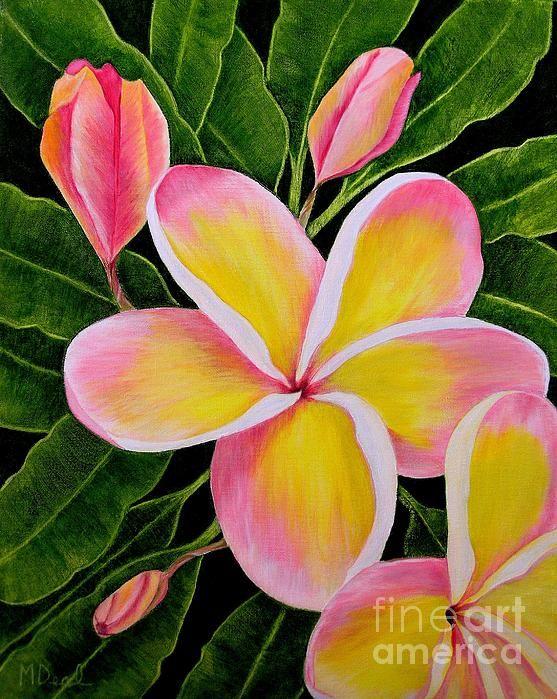 Rainbow Plumeria By Mary Deal Acrylic Painting Flowers Flower Art Flower Painting