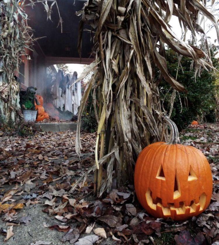 Halloween Spirit halloween, Halloween store, Halloween