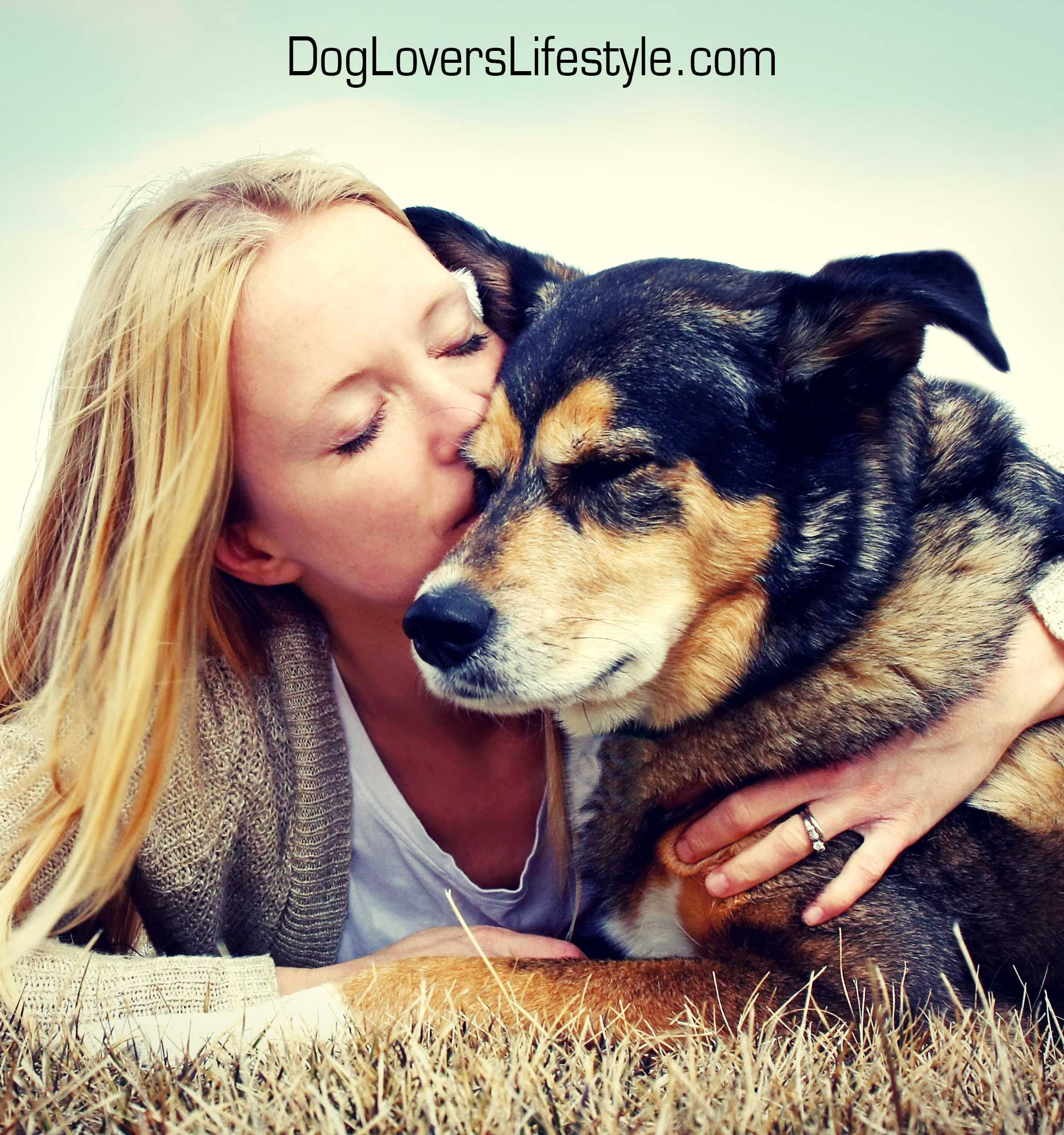 Dog lovers lifestyle please visit https