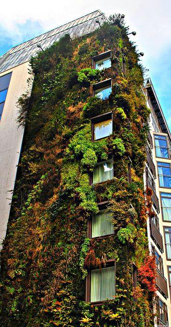 Green facade vertical living wall projects pinterest gr ne fassade gr ne architektur and - Grune architektur ...