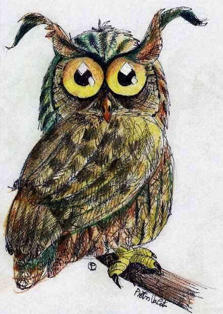 39 gufo mago vinicius 39 by vincenzo caroli buhos owl y arte - Disfraces de buhos ...