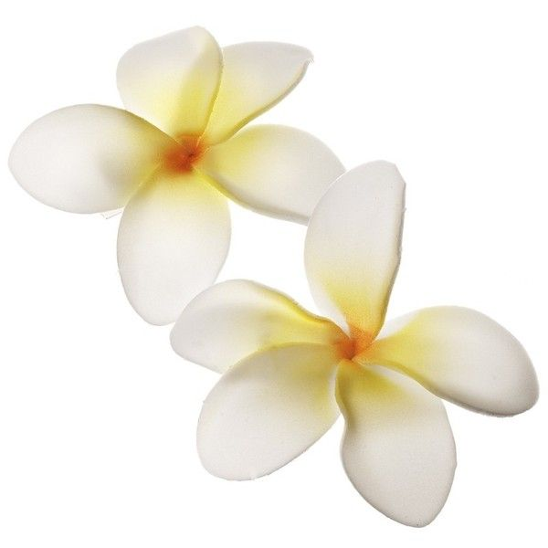 Aloha Frangipani 2pk Clips Hair ($8.31) ❤ liked on Polyvore