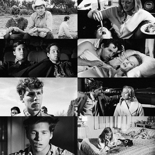 The Last Picture Show   chacun son cinéma in 2019   The ...