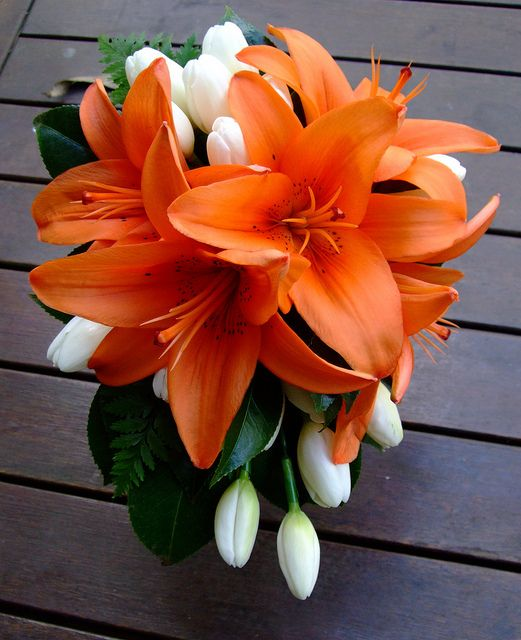 096d5527a4cef orange lilies and tulips. Lots of interesting color choices available $110  with oriental lilies, $100 with standard
