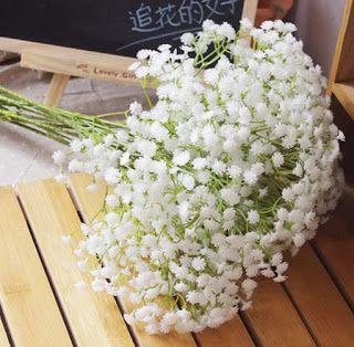 Informasi Harga Bunga Baby Breath Dan Tempat Membelinya Bunga Babies Breath Bunga Perkawinan Rangkaian Bunga