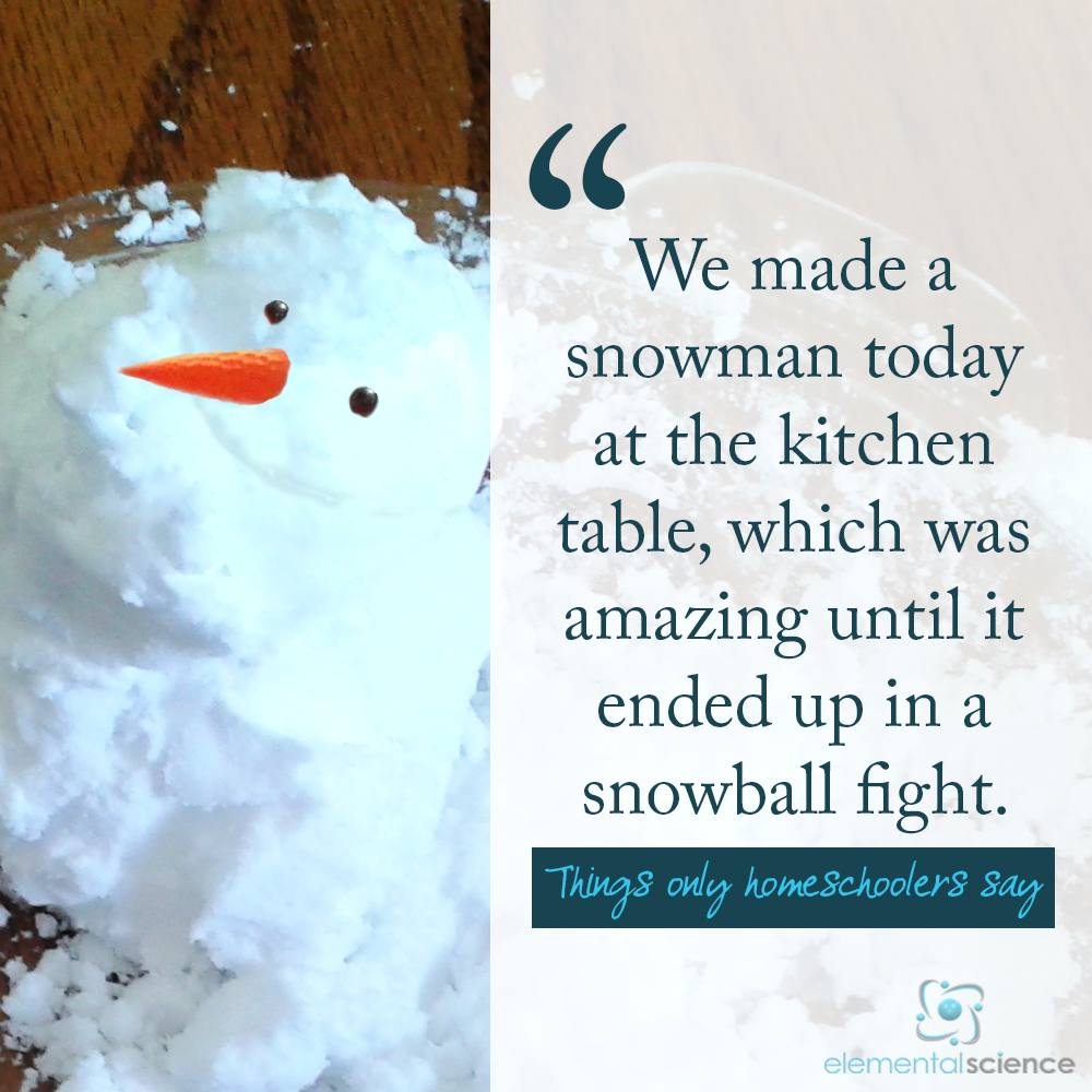 When is the last time you made an indoor snowman? | Pinterest | Snowman