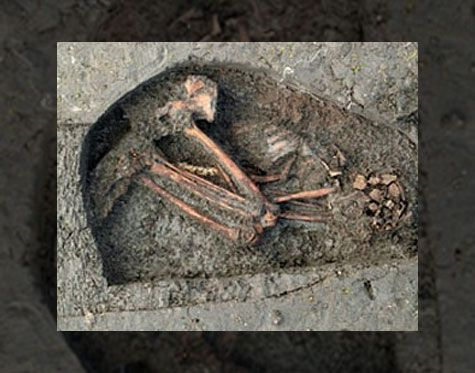 Oldest Human Artifact - Bing Images Oldest remains found ...