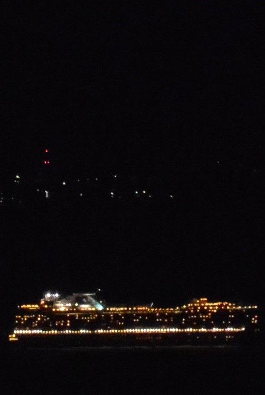 大島とパルテールの間の海域を通過する客船 プリンセルクルーズ 名前はわかりません 2014年8月31日 客船 パルテール クルーズ