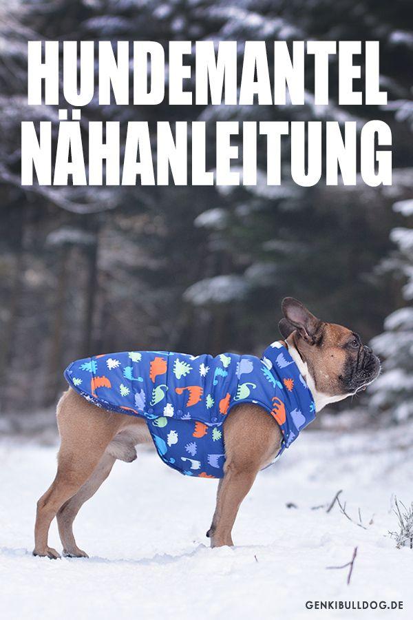 Photo of Anleitung: Hundemantel selbst nähen