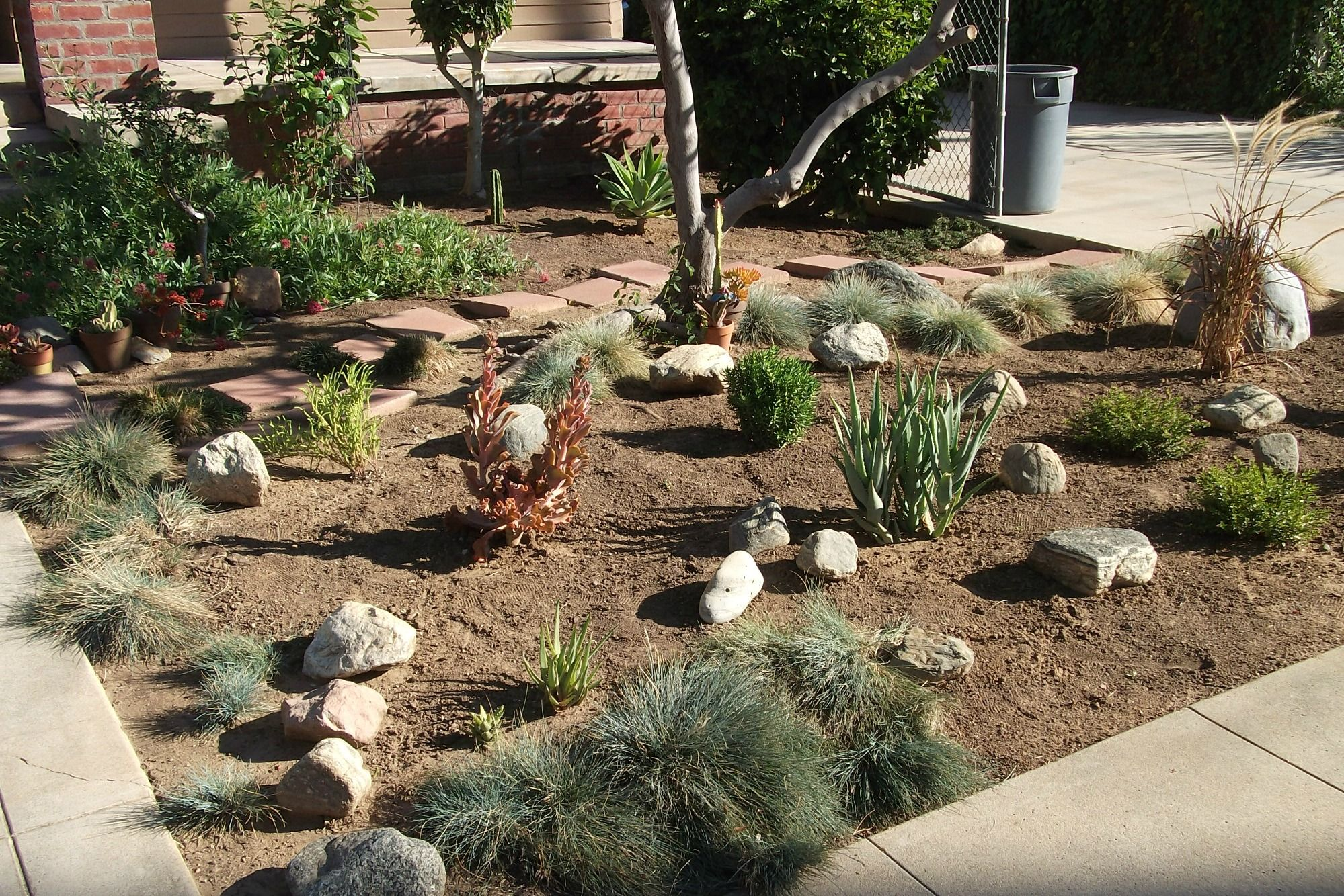 Homewood-Xeriscape-3.jpg (1999×1334) | Landscapes and Gardens ...