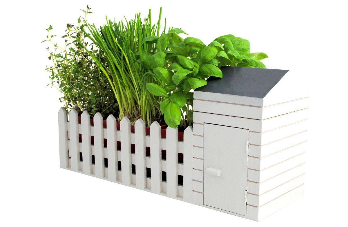 Kit Para Sembrar Plantas Aromáticas Cultivo De Plantas Hierbas De Interiores Jardín De Hierbas Interior