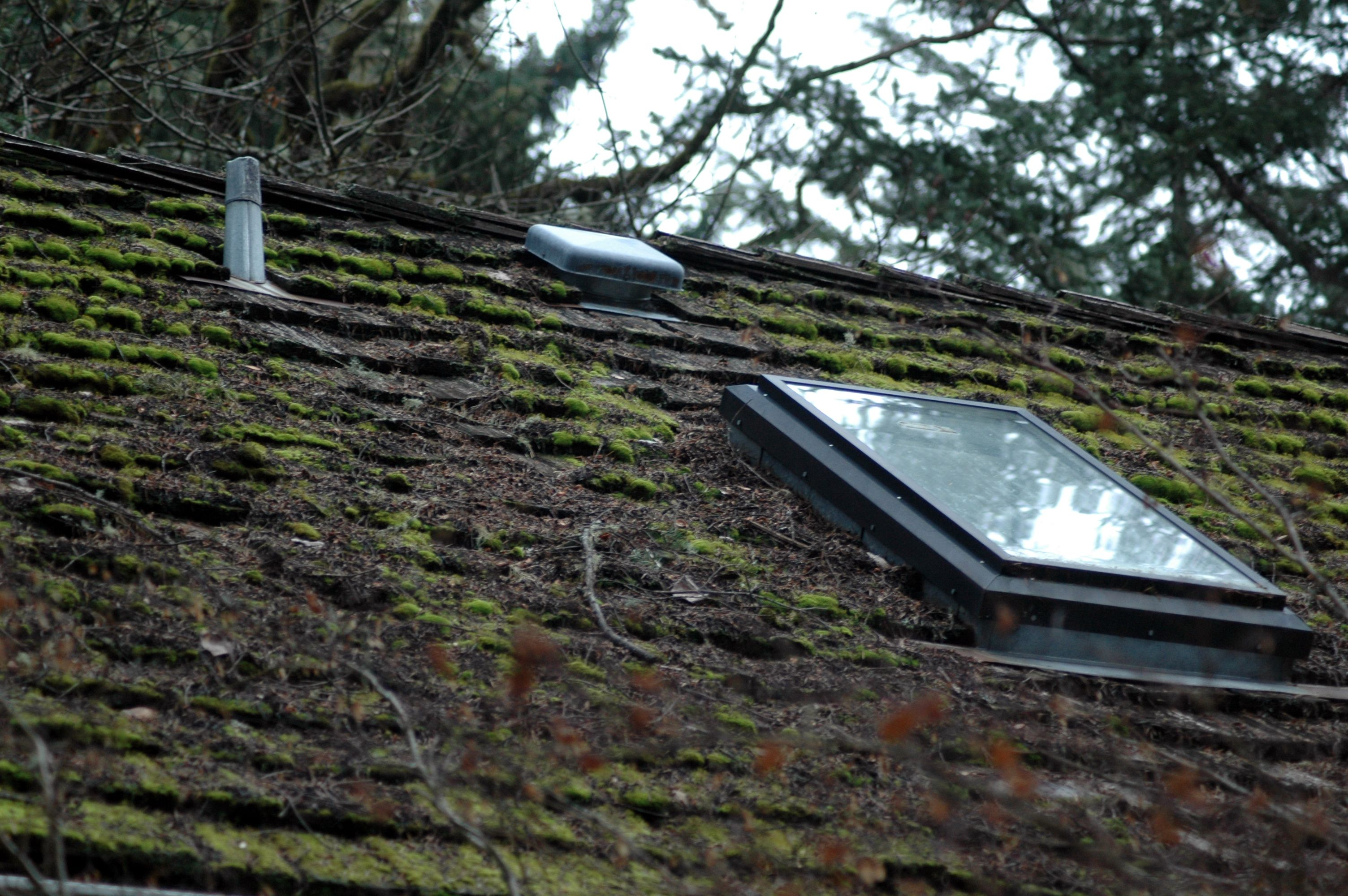Best Cedar Shake Roof Maintenance Repair Vancouver Wa By Northwest Roof Maintenance Moss Removal 640 x 480