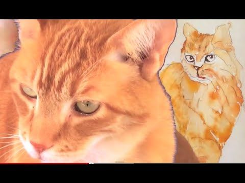 How To Speed Paint A Cat With Watercolor Step By Step Guide Animal Paintings Cat Portraits Cat Painting