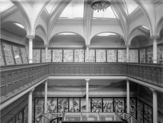 The original building with the gallery in use #MuseumWeek #BehindTheArt