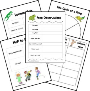 Frog observation sheet, life-cycle sheet & other