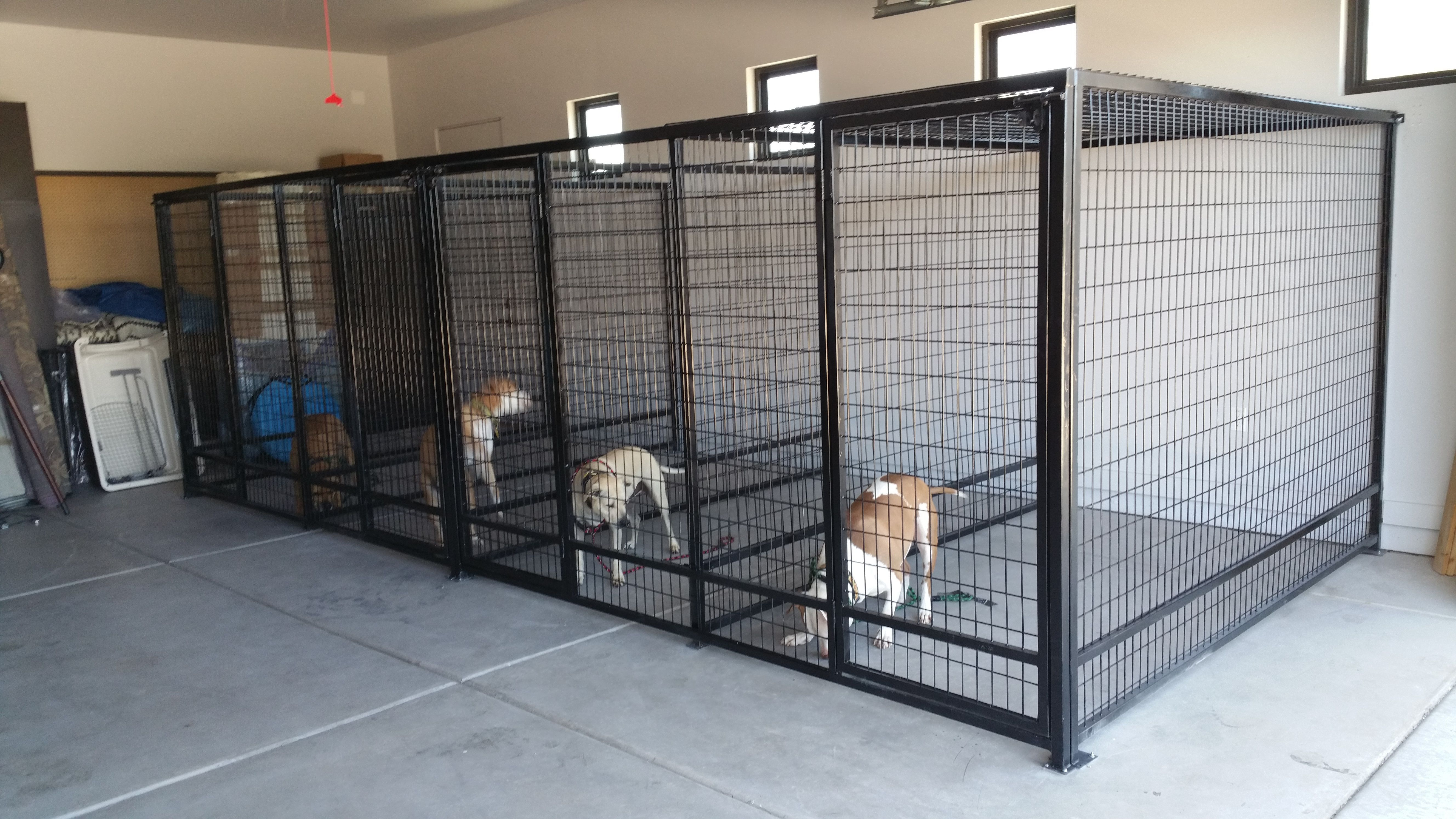 Interior Garage Kennels Installed Dogcratekijijiottawa Indoor