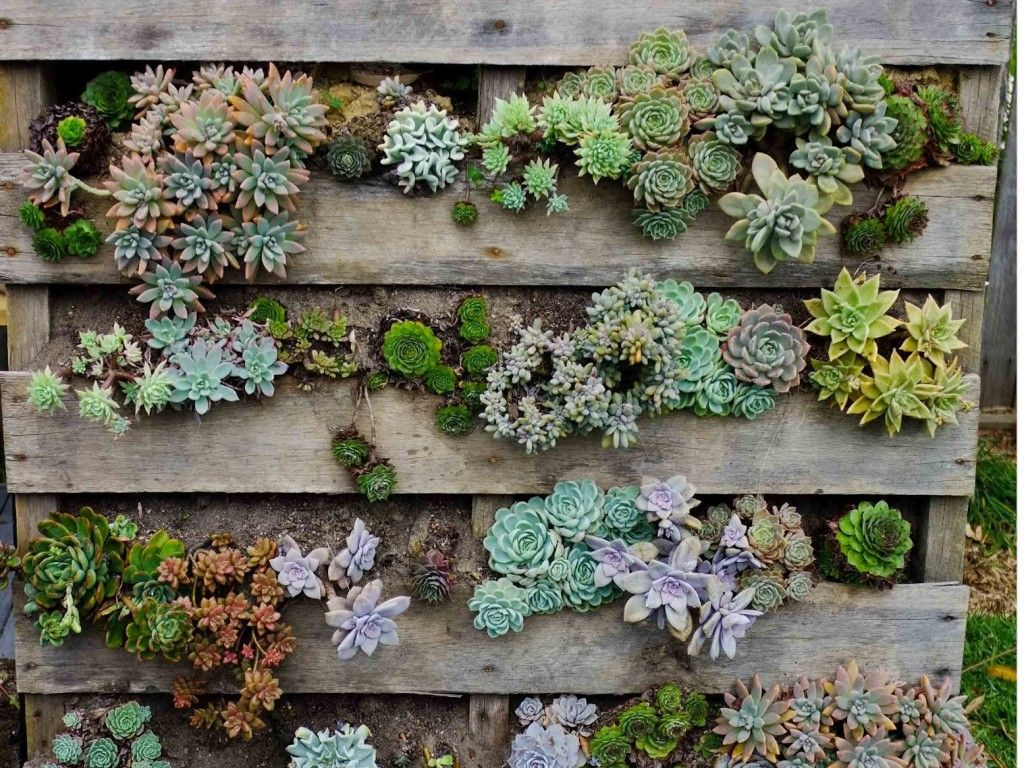 Image result for pinterest decoration des fleurs dans les ...