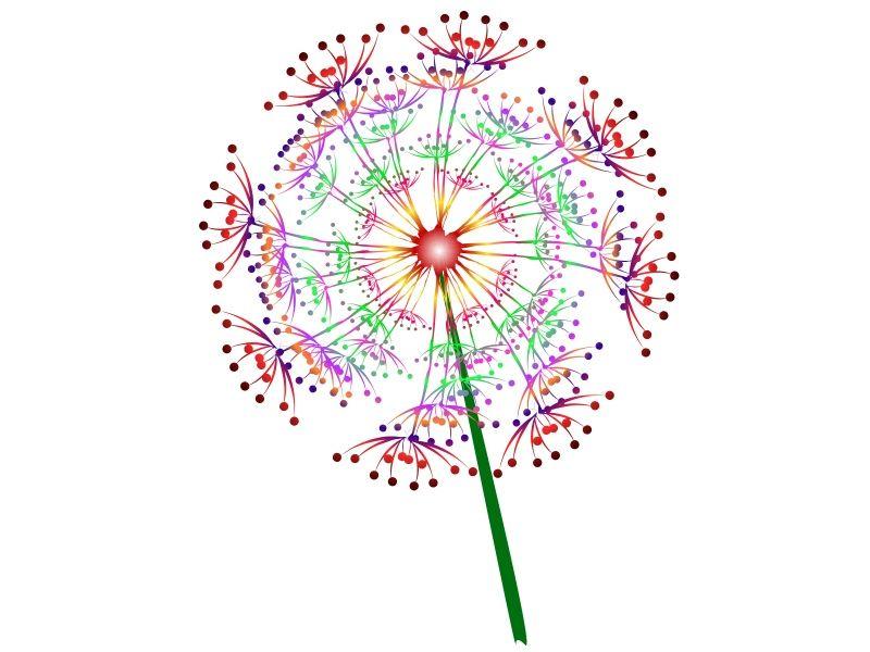 Dandelion head/clock/seed  Sweet treat delights