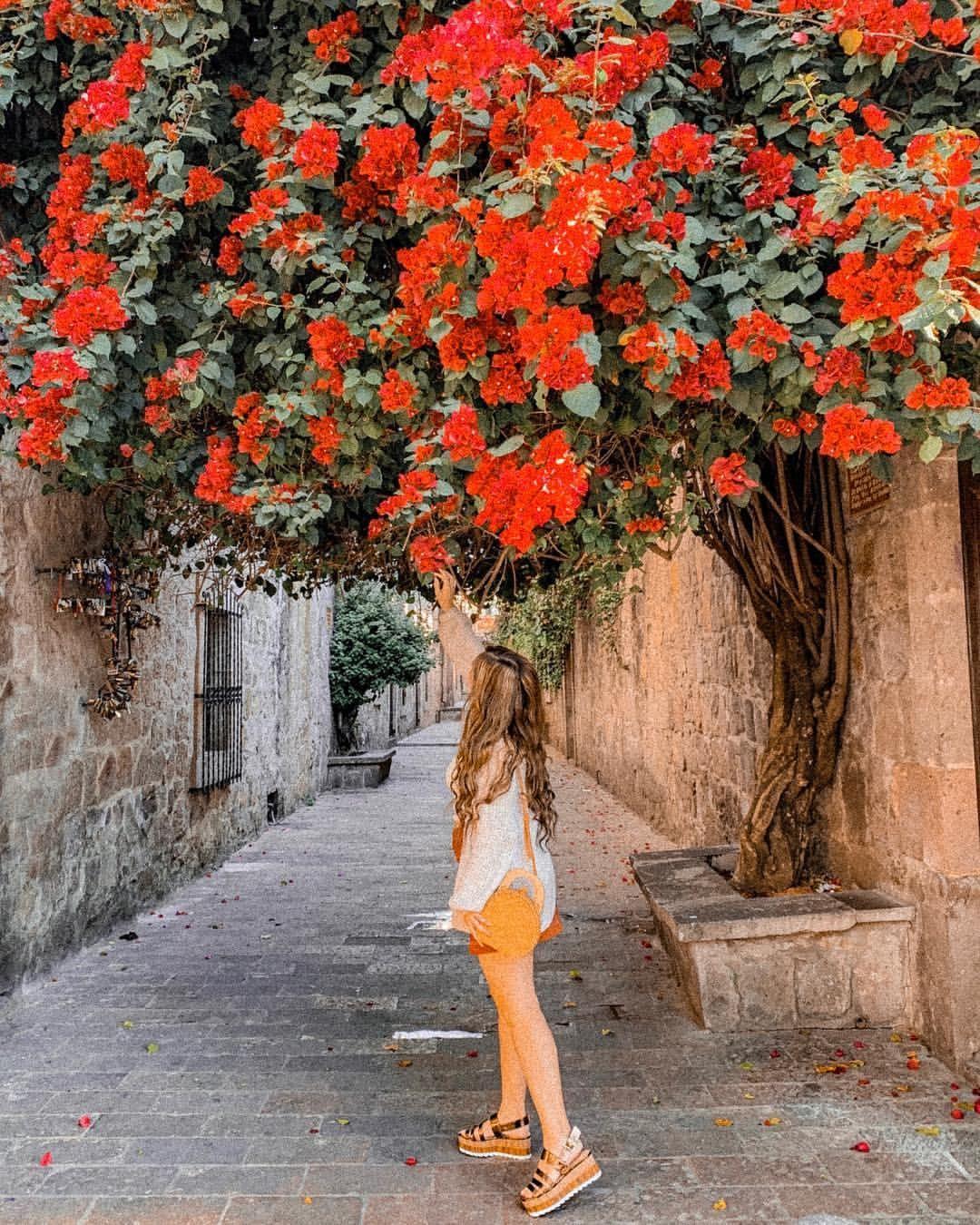 Callejón del Romance, uno de los lugares para redescubrir Morelia.