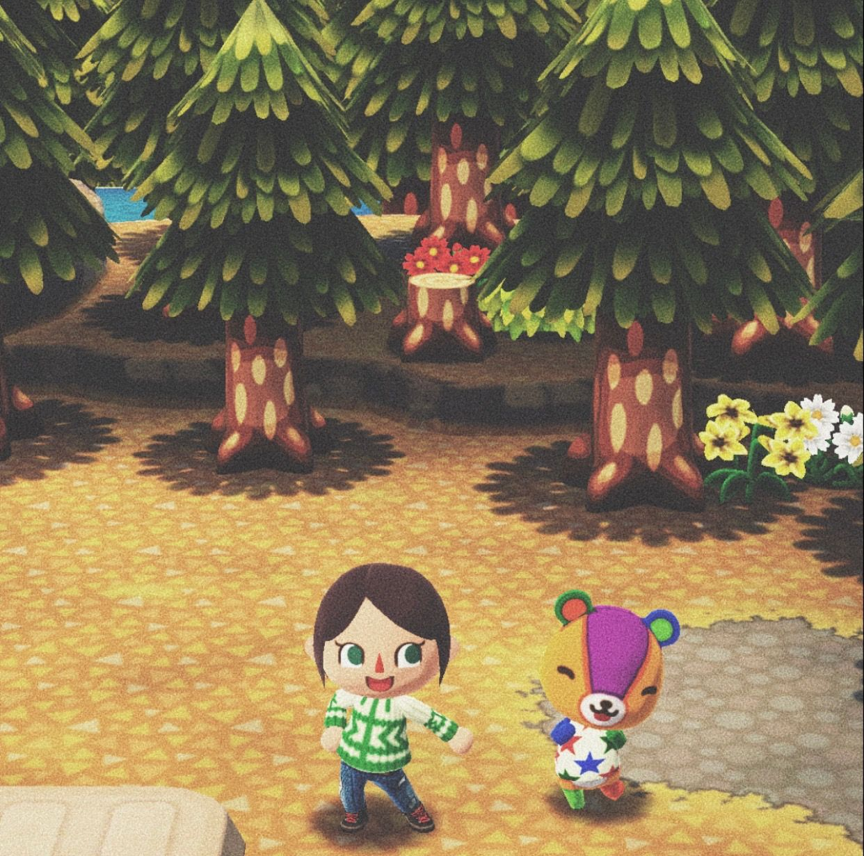 Just Got A Classic Acpc Animalcrossing Pocketcamp Animal