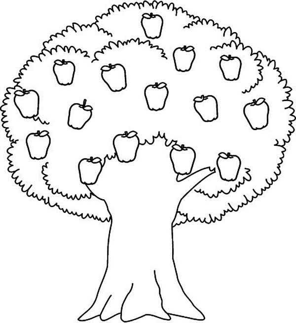 Apple Tree Awesome Apple Tree Coloring Page Coloring