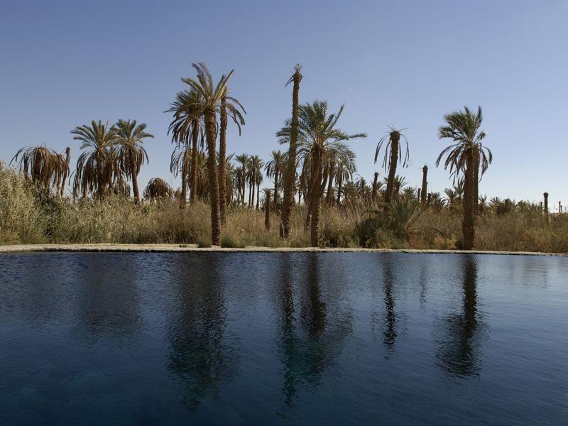 Siwa Carols Ghaliet Ecolodge Siwa Siwa Oasis Karnak Temple Tours
