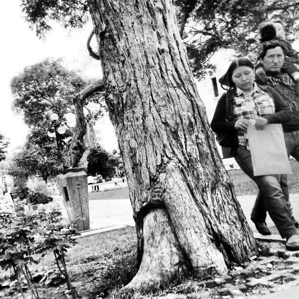 Familia #Lima #Perú #mobilephotography #streetphotography #family #instabeauty - @cangurito- #webstagram