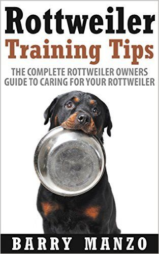 Rottweiler Dog Breed Information Pets And Animal Rottweiler