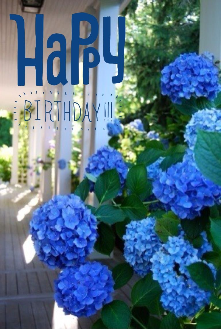 Hy Birthday To You Blue Flowerspretty