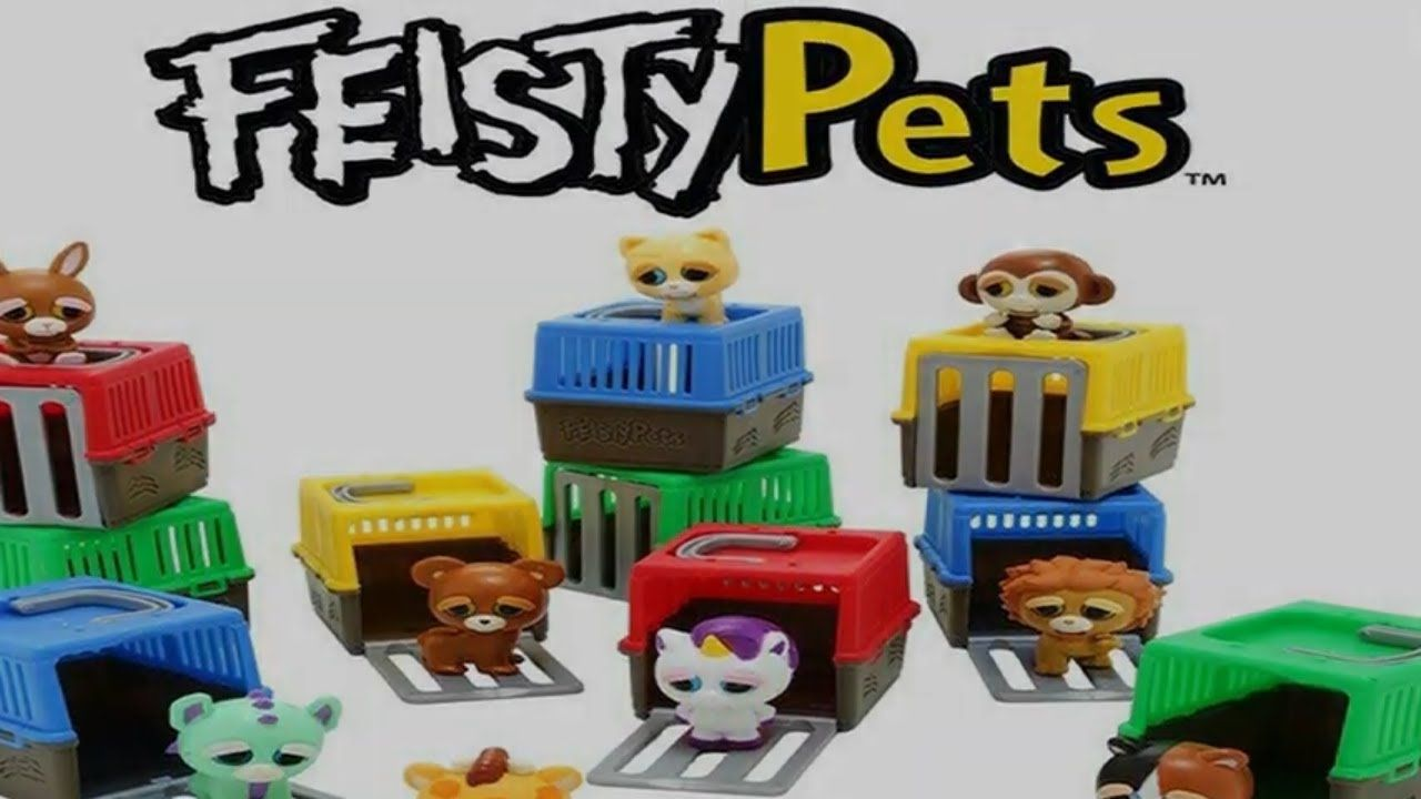 Feisty Pets Mini Misfits Unboxing Pets Unboxing Feisty