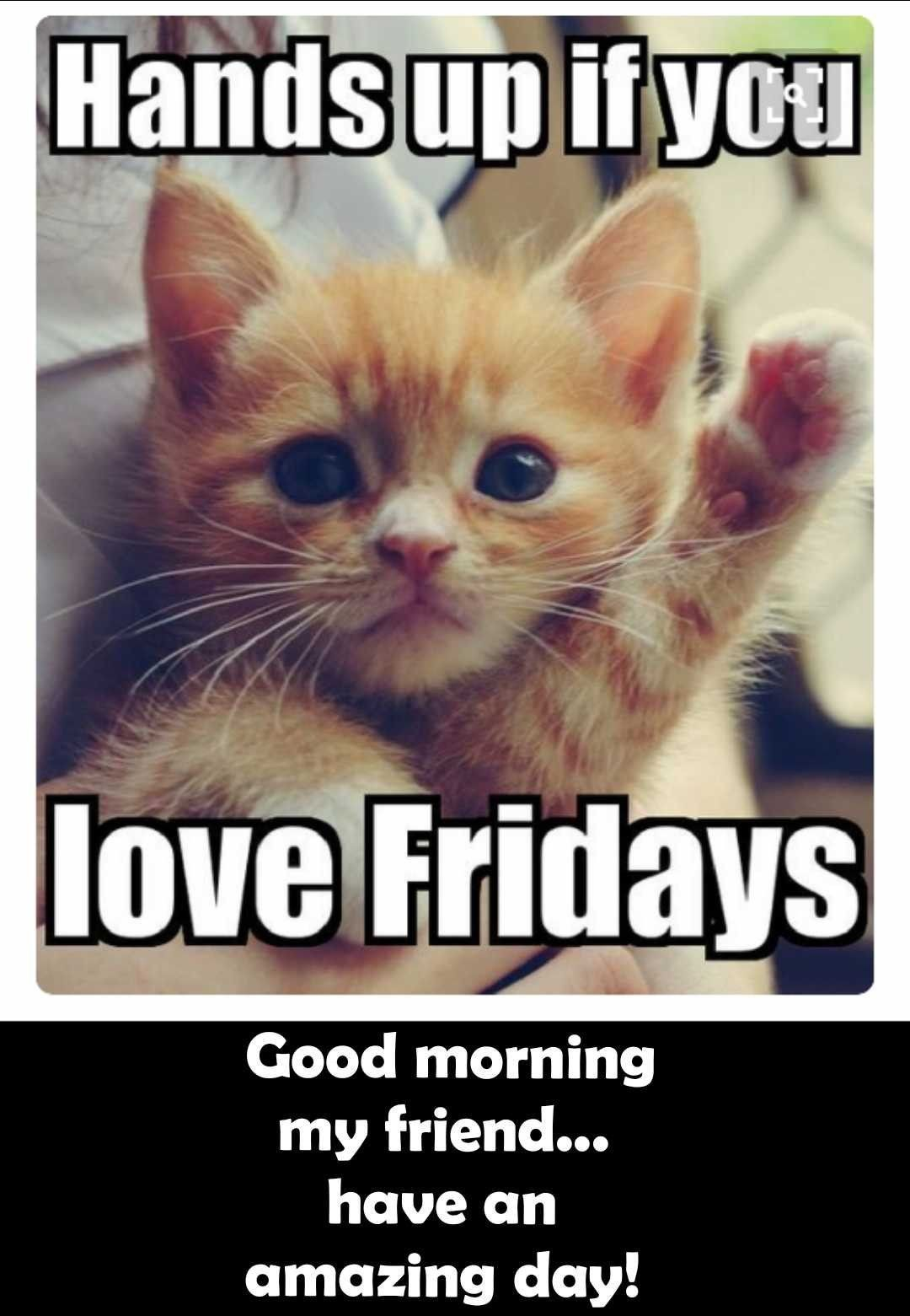 Pin By Kimbraov On Friday Greetings Blessings Happy Memes Funny Friday Memes Its Friday Quotes