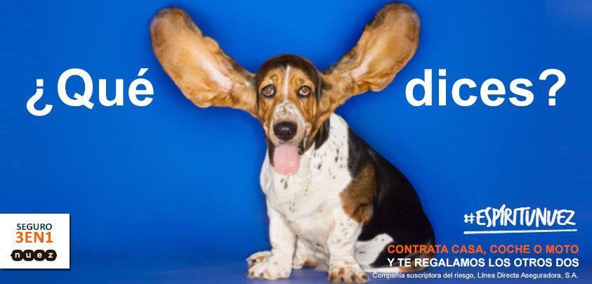 Si, si, has escuchado bien: tres seguros y solo pagas uno. #frases #humor #perros