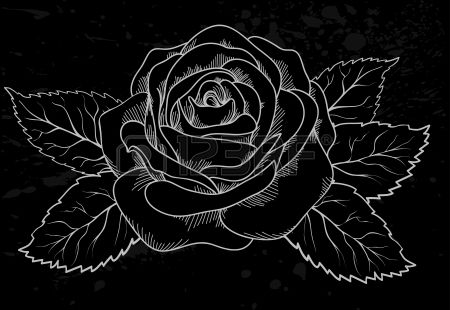 Beautiful White Rose Outline With Gray Spots On A Black Background Rose Outline Black Backgrounds White Roses