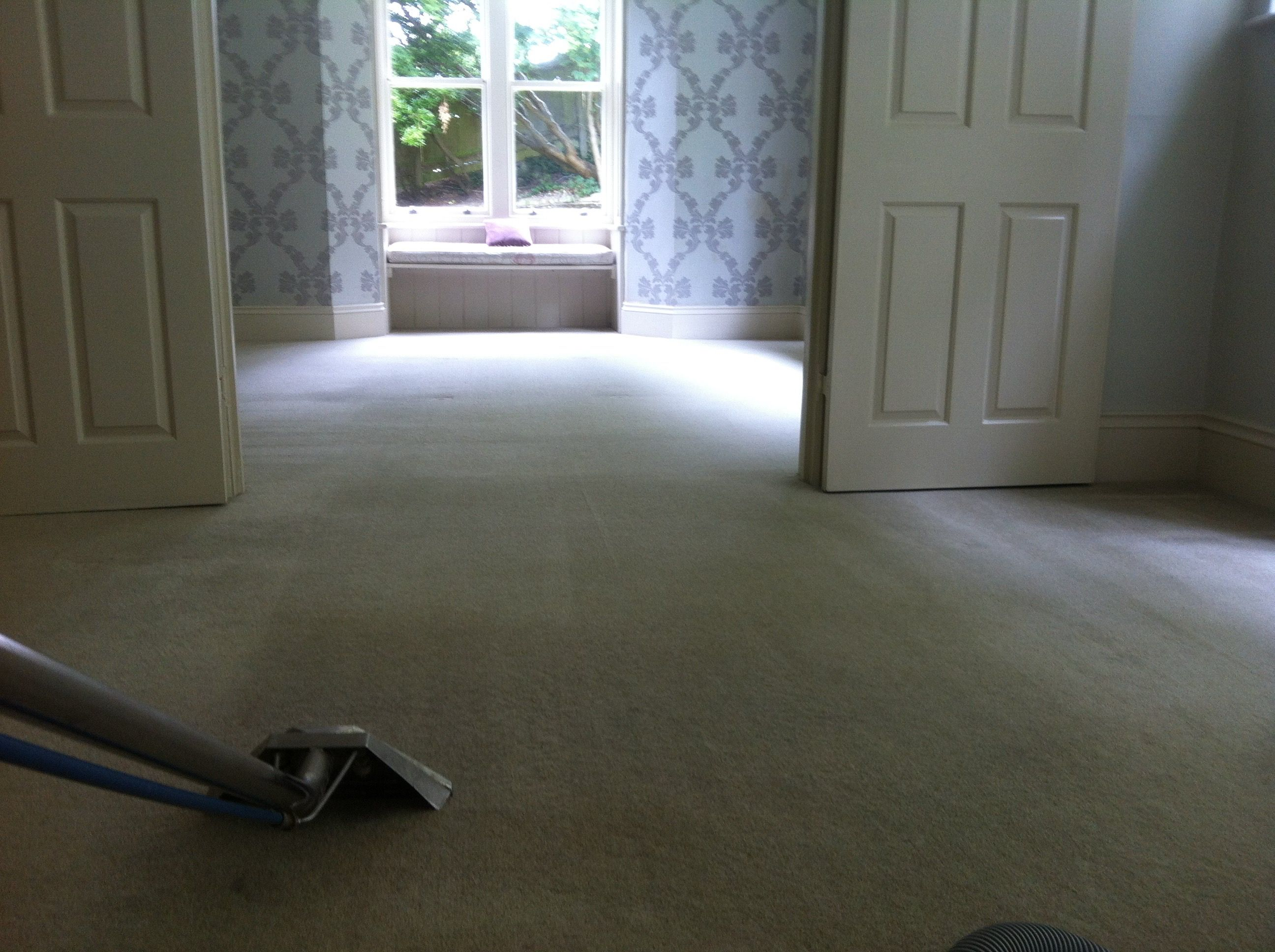 Carpet Steam Cleaners Brighton Hove Worthing Sussex Carpet Steam Cleaner