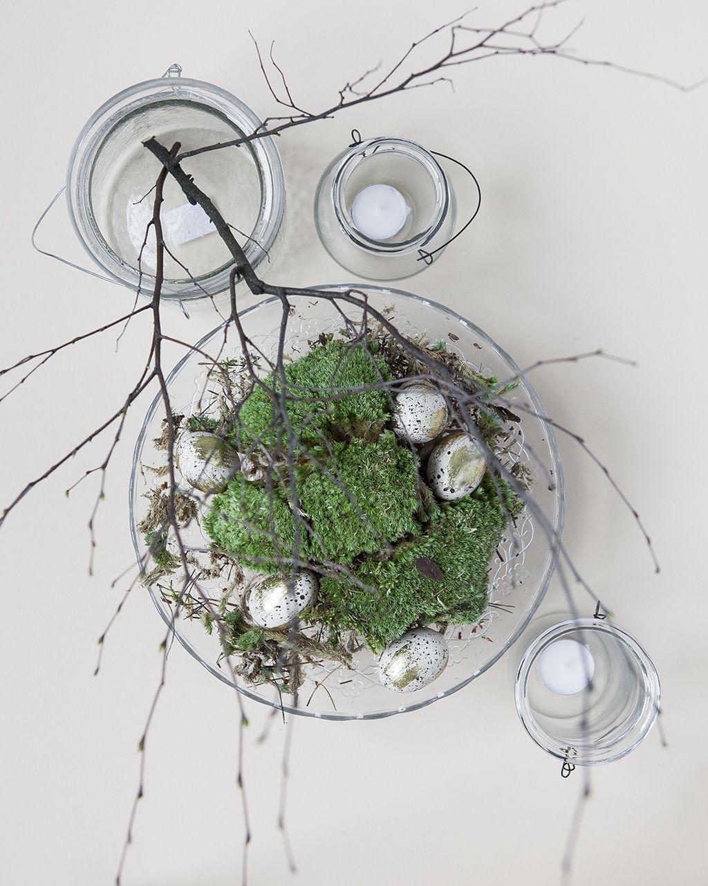 osterdeko mit moos und birkenzweige ostern pinterest ostern birkenzweige und moos. Black Bedroom Furniture Sets. Home Design Ideas