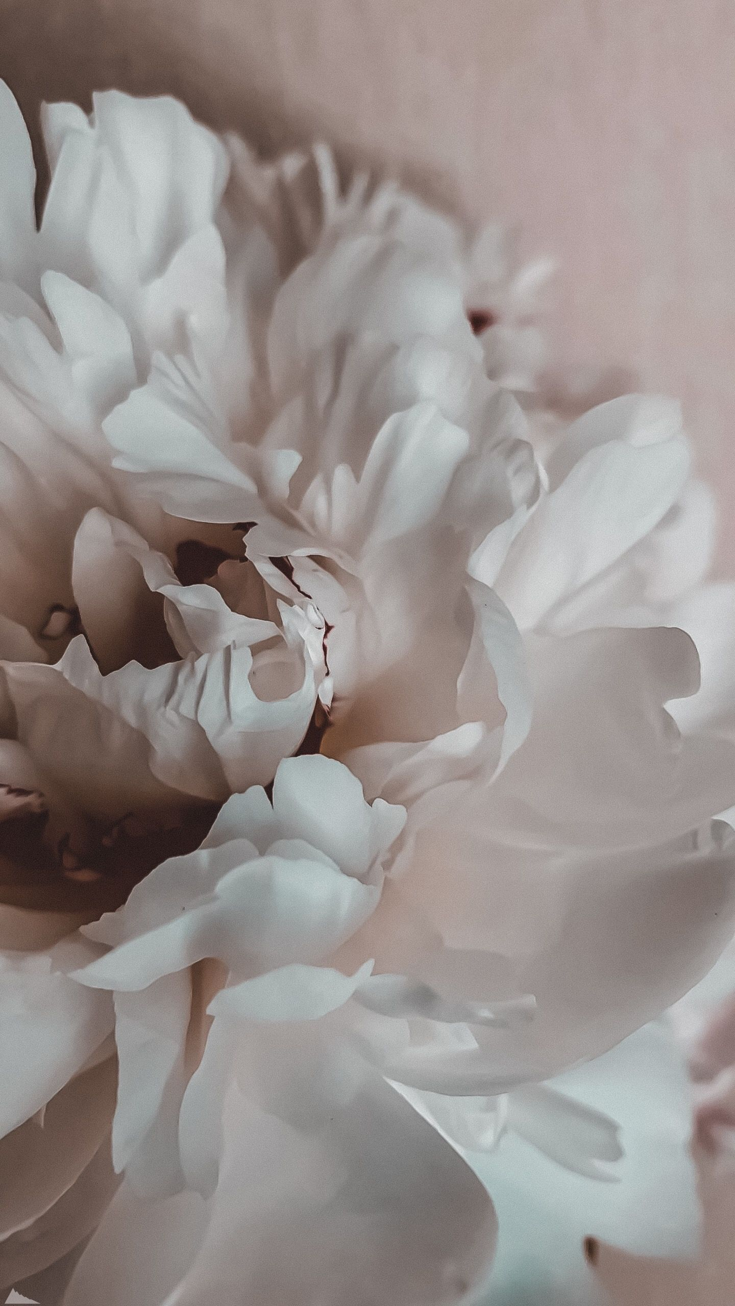 #paperflowerswedding