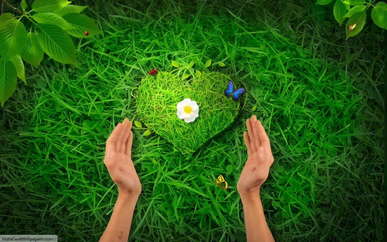 Love Nature Google Search Wallpaper Free Download Love Wallpaper Heart In Nature