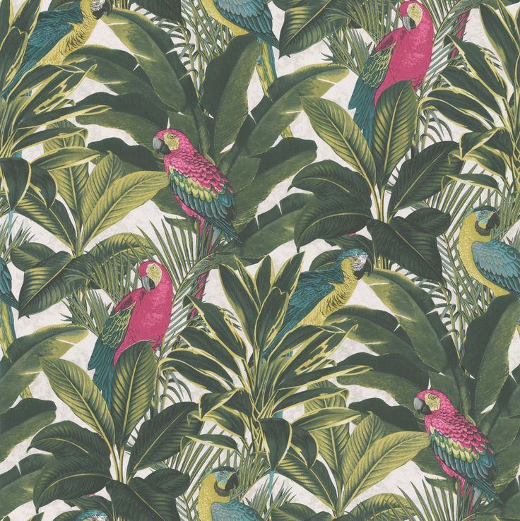 Parrots and Palms wallpaper by Albany