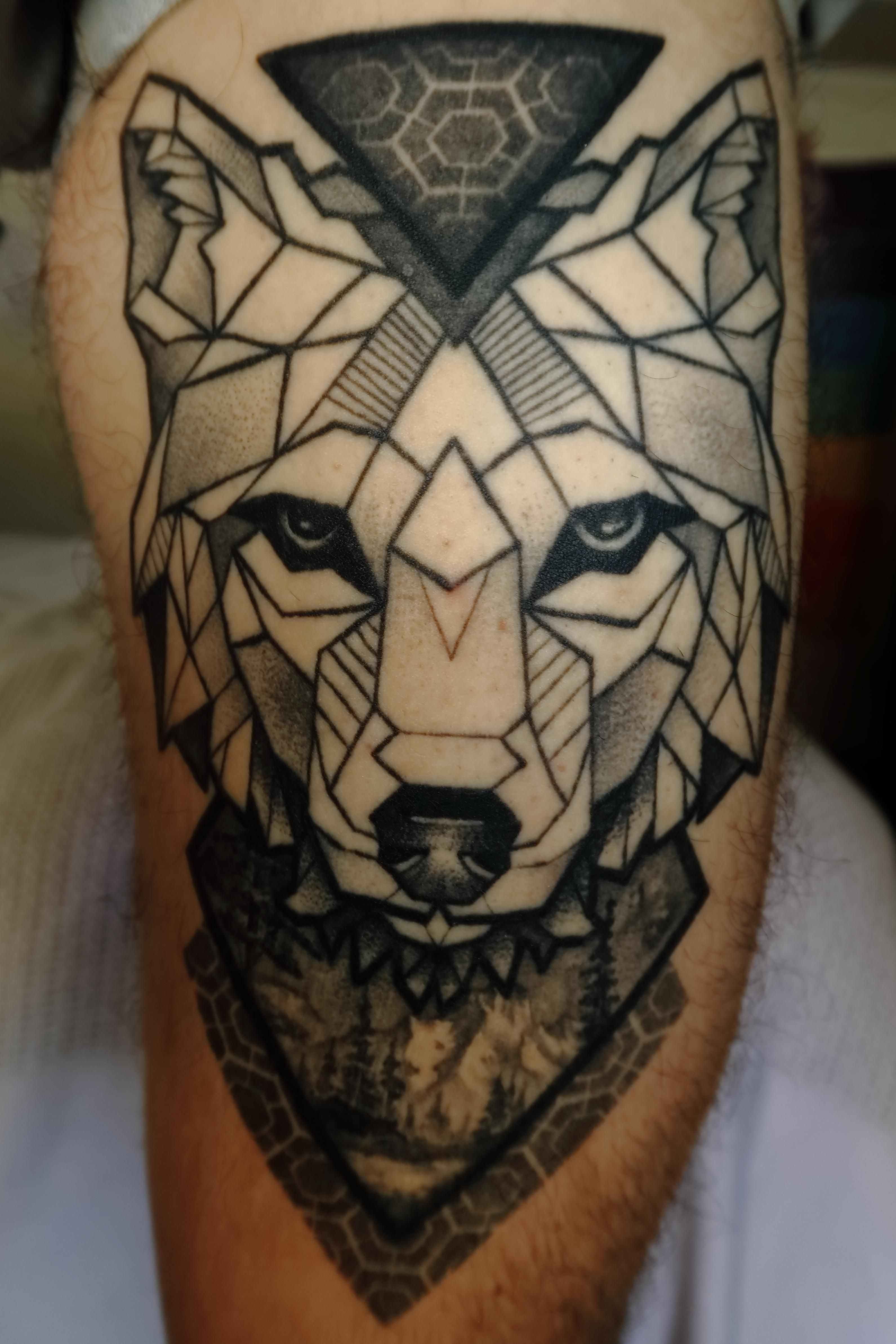 Geo wolf by matej bacic at black diamond port adelaide in