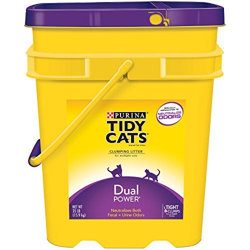 Tidy Cats Cat Litter Clumping Dual Power 35pound Pail Pack Of 1 Continue To The Product At The Image Link Tidy Cats Clumping Cat Litter Cat Litter