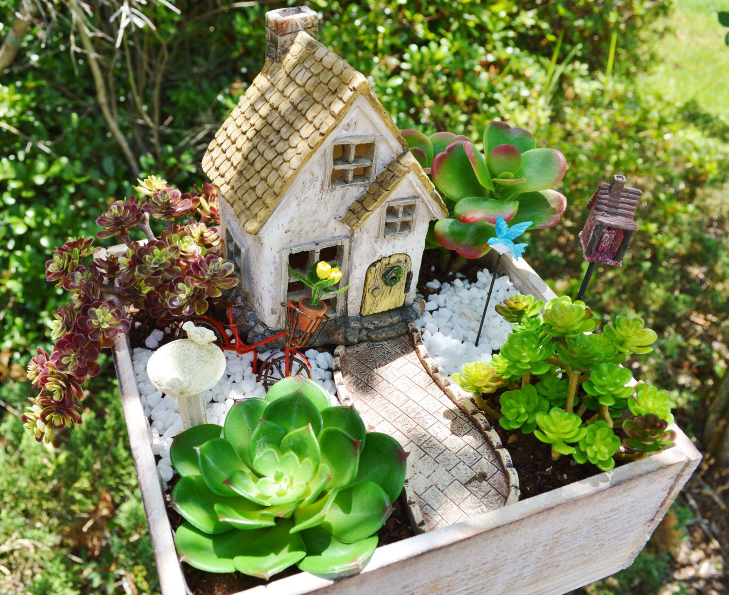 Hilarious House Herb Garden Kits Fairy Garden Cottage Miniature House Kit Wooden Planter Herb Gardenkit Birdbath Fairy Garden Cottage Miniature House Kit Wooden Planter Herb Home Herb Garden Kit