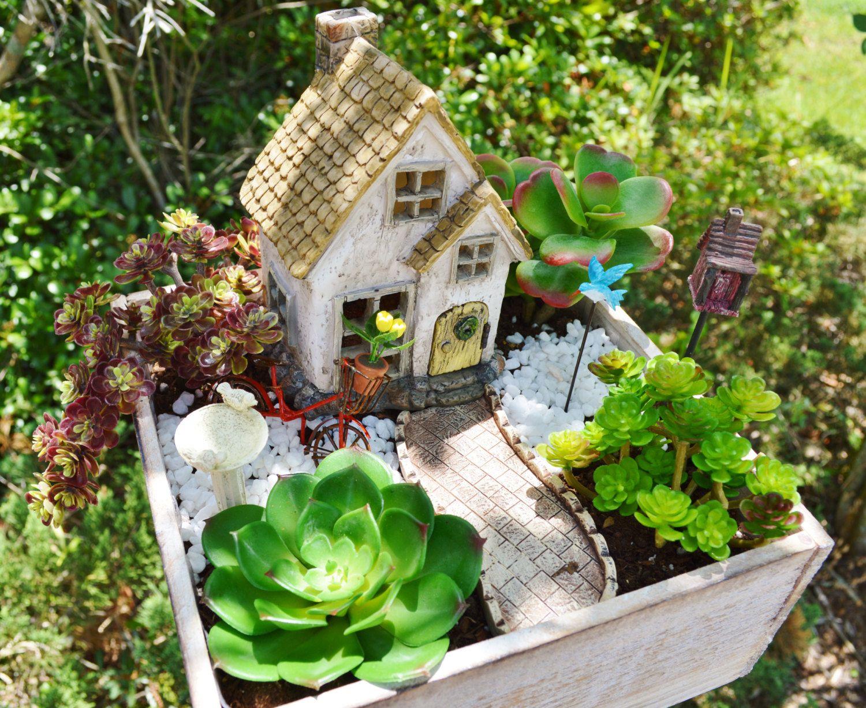 Medium Of In House Herb Garden Kit