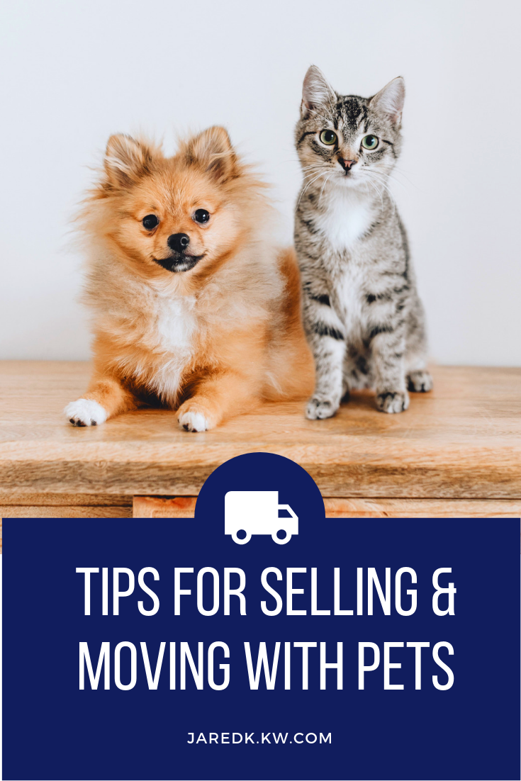Moving with Pets Home selling tips, Moving tips, Pets