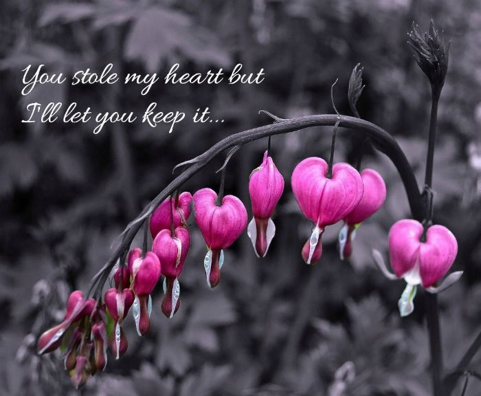 Inspirational Love Quote You Stole My Heart But I Ll Let You Keep It Love You Messages Inspirational Quotes About Love Love Quotes
